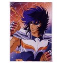 PHOTO SAINT SEIYA PHENIX