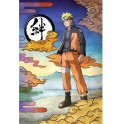 PLAQUE METAL NARUTO