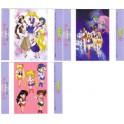 3 INDEX CARDS SAILOR MOON 0493